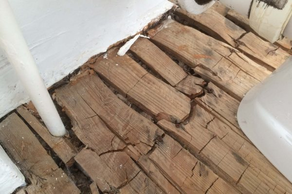 2014 Dry Rot damage to floorboards within a first floor bathroom